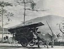 sejarah gerobak roda 2 dan  cikar